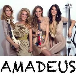 Preturi Artisti Amadeus